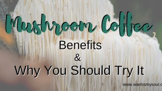 Mushroom Coffee Benefits and Why You Should Try It