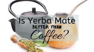 Is Yerba Mate Better Than Coffee?